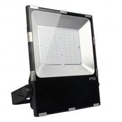 FUTT07  projecteur 100w rgb...